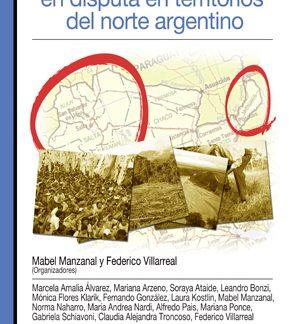 Libro desarrollo y sus logicas en disputa territorio norte argentino CICCUS